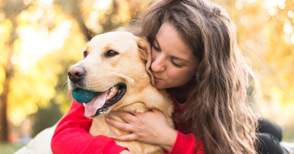 13 hundar vars ansiktsuttryck säger allt   Hänt