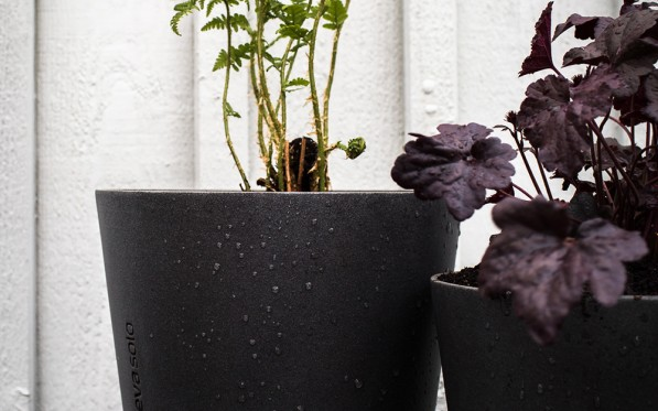 Daniella´s Trädgård – Planterin...